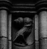 The curvy snail Royalty Free Stock Photo