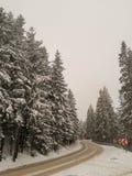 Curvy Snowy-Land-Straße in den polnischen Bergen, Polen, Europa lizenzfreie stockbilder
