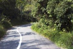 Curvy tar road surrounded trees Stock Photos