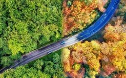 Curvy väg till och med skog i sommar och höst fotografering för bildbyråer