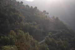 Curvy vägar på en berglutning arkivbilder