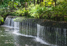 Curvy Waterfall. In the garden with dense bush royalty free stock image