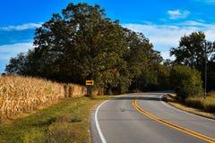 Curvy wiejska droga z polem uprawnym zdjęcie stock