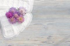 Cuscinetti quotidiani e mestruali della donna per igiene o periodo del sangue Cuscinetti molli sanitari di mestruazione con i fio Immagini Stock Libere da Diritti
