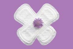 Cuscinetti quotidiani e mestruali della donna per igiene o periodo del sangue Cuscinetti molli sanitari di mestruazione con i fio Fotografia Stock