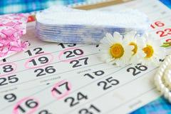 Cuscinetti sanitari, calendario, fiore bianco della camomilla su un fondo leggero Fotografia Stock Libera da Diritti