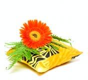 Cuscino e fiore aromatici Fotografie Stock