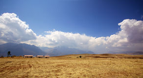 Cusco, Peru. Golden rice field  with cloud against the blue sky near Cusco, Peru Stock Photos