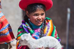 Native of Cusco. Cusco, Peru, July 2018: Native girl from Cusco, with her typical costumes, holds a little sheep in her arms while tourists take pictures of her stock photography