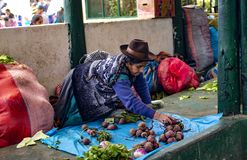 Indigenous senior woman sitting on the ground and selling vegetables stock photos
