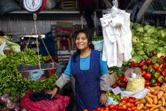 Indigenous young woman smiling and selling vegetables royalty free stock photos