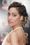Cush Jumbo Stock Photos