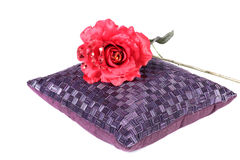 Cushion and flower Royalty Free Stock Photography