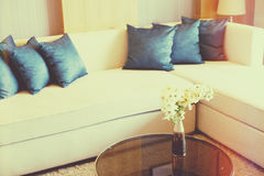 Cushion. On sofa at home stock images