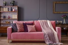 Cushions and blankets on a pink velvet sofa in a luxurious gray. Cushions and blankets on a powder pink velvet sofa in a luxurious gray living room interior with stock image