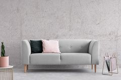 Cushions on grey couch in minimal living room interior with plant on gold table. Real photo.  stock photography