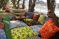 Cushions among trees near beach Stock Images
