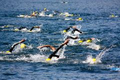 Cusio Cup, Olympic Triathlon Stock Photos