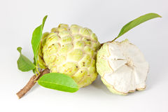 Custard Apple Stock Photography