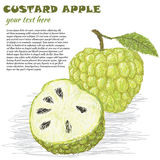 Custard-apple Stock Images