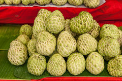 Custard apple is eaten fresh from the tree are useful. Royalty Free Stock Photography