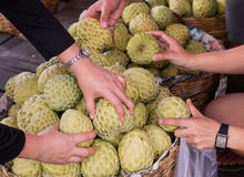 Custard apple in fresh market. Thai fruit Stock Image