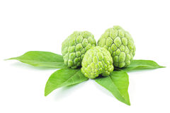 Custard apple Fruit Thailand. Green fruit on white background Royalty Free Stock Photography