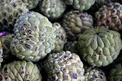 Custard apple (Fruta-do-conde). Custard apple also known as Fruta-do-conde in Brazil Royalty Free Stock Photos
