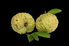 Custard apple. Fruta do conde black backgrouds Royalty Free Stock Photos