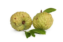 Custard apple. Fruta do conde  isolated on white background Royalty Free Stock Photos