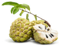 Free Custard Apple Isolated Stock Photography - 33415542