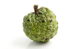 Custard apple isolated in white background Royalty Free Stock Image