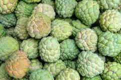Custard apple - Stock Image Stock Images
