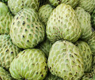 Custard apple, Sugar apples or Annona squamosa Linn Stock Photography