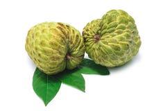 Custard apple on white background. Sugar Apple ,Custard apple, Annona, Sweetsop on white background Stock Image