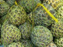 Custard Apples. Netted bags of custard apples for sale in a fruit shop Stock Photography