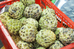 Custard apples Annona squamosa Royalty Free Stock Image