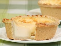 Custard cake. Egg custard tart on a green table cloth Royalty Free Stock Image