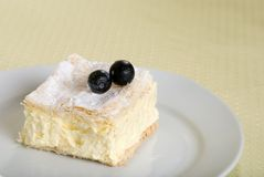 Custard cake square on a plate with fresh blueberr Stock Photography