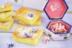 Custard Cake Royalty Free Stock Images