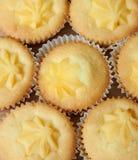 Custard cakes Stock Image