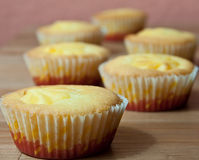 Custard cakes Royalty Free Stock Photography