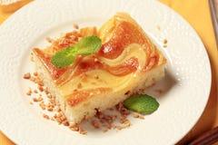 Custard cream sponge cake Stock Image