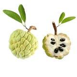 Custard jabłko zdjęcie stock