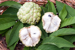 Custard jabłko z liśćmi w łozinowym koszu Obraz Royalty Free