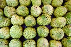 Custard jabłka Obraz Royalty Free