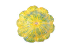 Custard Squash. A custard squash on a completely white background stock photography