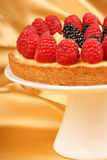 Custard tart with raspberries and blackberries Stock Photography