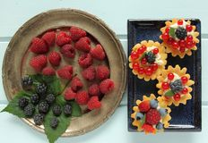Custard tarts Royalty Free Stock Photo