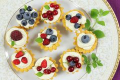 Custard tarts Royalty Free Stock Image